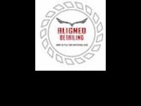 Logo - Aligned Detailing